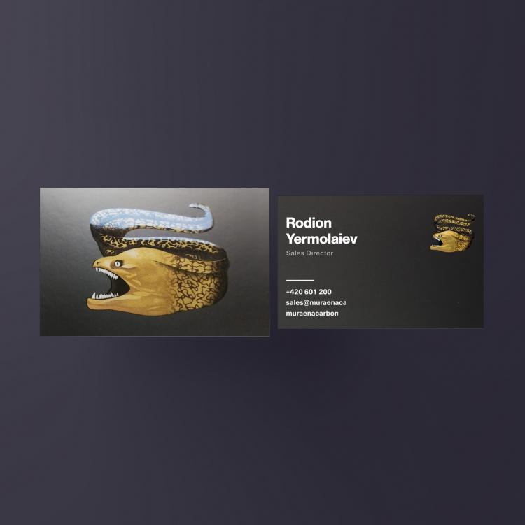 HLADKÝ ČERNÝ PAPÍR 360G<br />// CMYK + BÍLÁ // 3D LAK